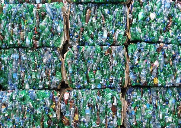 Little Green Bottles. by Gecko