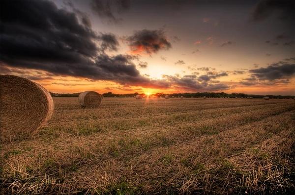 Bales by Darren9330