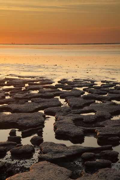 Moddergat - Mud Flats by SGIBBONS