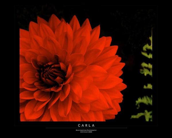 Carla by RickCar
