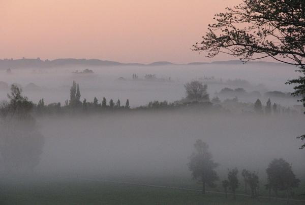 Valley Mist. by Gecko