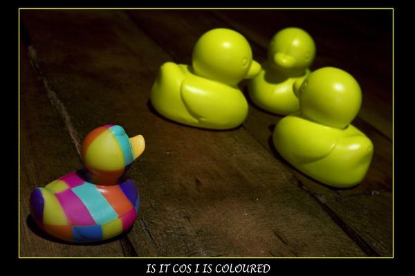 Racist Ducks by gsxr400
