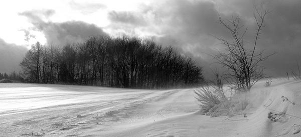 desolate by sarmour