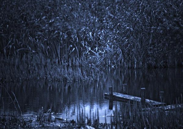 Leighton Moss III by GrahamBaines