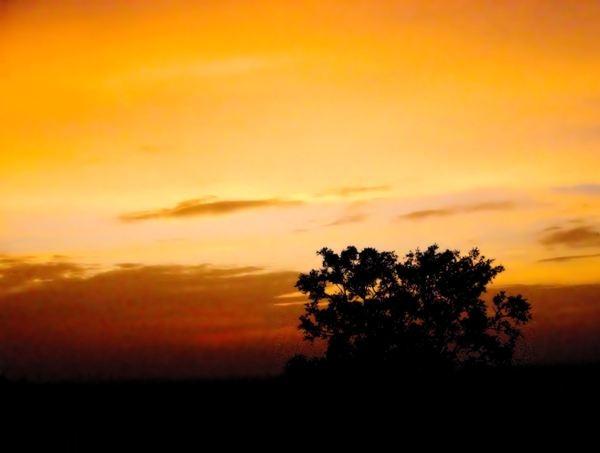 sunset again by jairathore