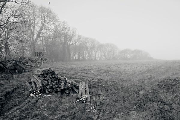Morning Mist - North Devon by JBA