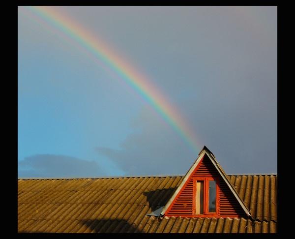 Rainbow by sharlotte51