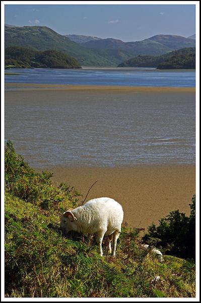 Wales by urdygurdy