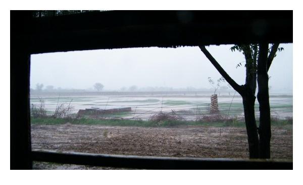 Rain by kishanm14