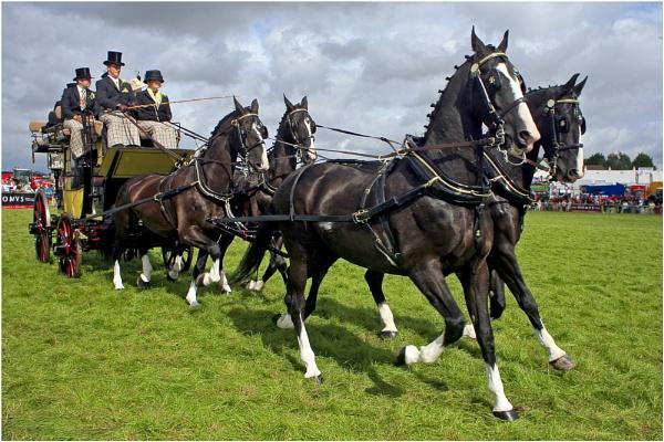Coach & Horses by pennyspike