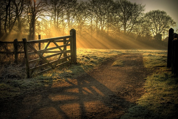 Sun\'s Rays and a Gate by terry-