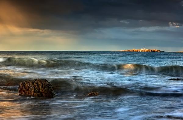 Farne Away... by chris-p