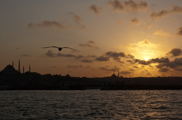 Istanbul skyline by claudio the bassist