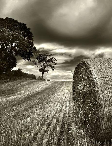 Moody Mono Harvest by bobalot