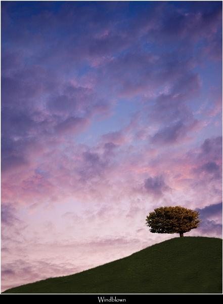 Windblown by Kris_Dutson