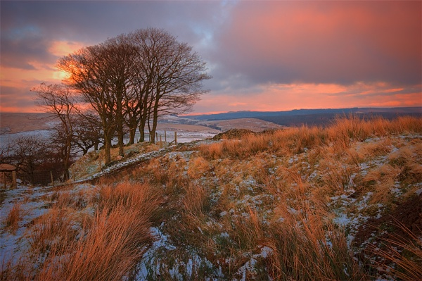 Thaw by Yewtree