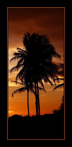 Caribbean sunset by gribishok