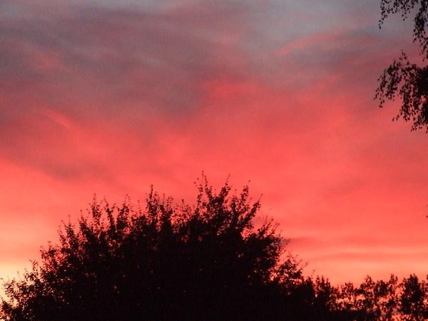 Evening Sky by flickchick