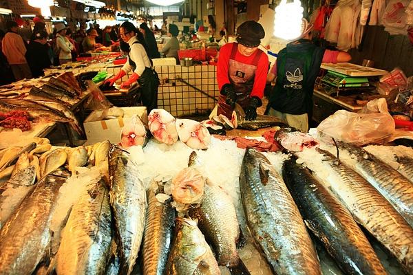 Fish Market by Sammifang