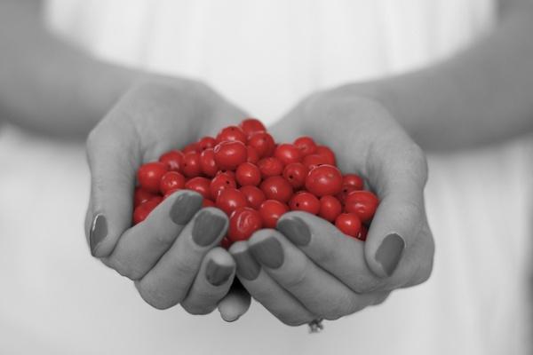Berries by dfawbert