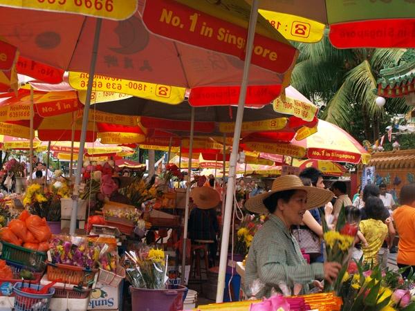 Singapore Flower market by elaronndy