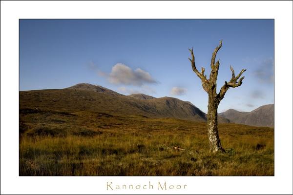 Rannoch moor II by allan_j