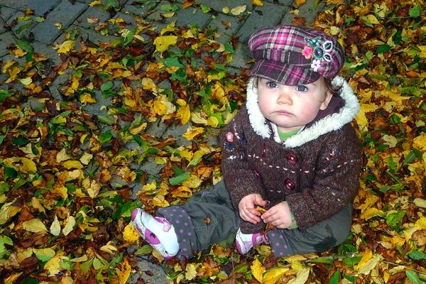 Autumn Fun II by derry