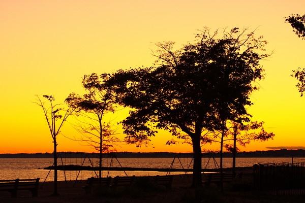 Golden sky by msmphoto