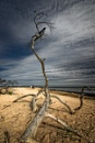 Kolka Beach, Latvia