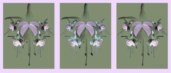 CVC flowers by helenlinda