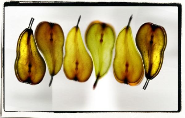 Pearyin/Pearyang by lagil57