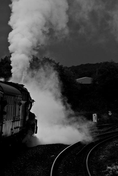 Torbay Express by Bryn_Jones