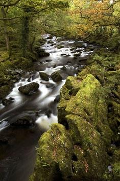 Autumn in Snowdonia by copek