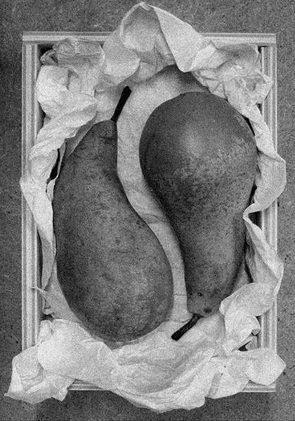 Pears Still Life by WalterBrooks