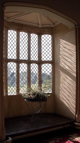 Fox Talbot\'s window by maggieh