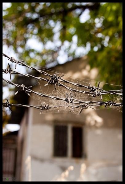derelict Home by R3za