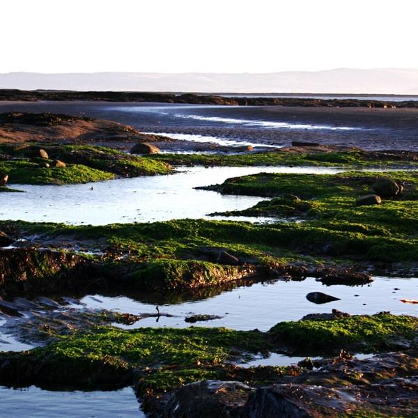 coastline by birgit