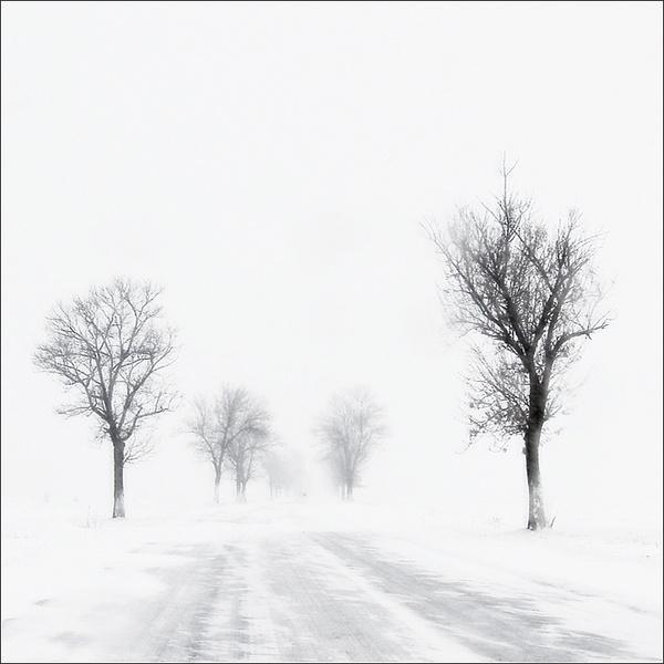 white by ileana_bt