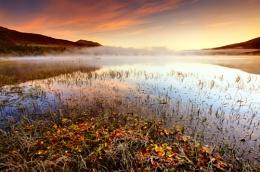 Autumnal Mist..