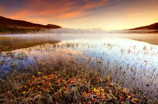 Autumnal Mist.. by chris-p