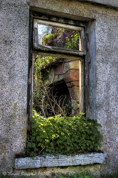 Through the Window by BernieS