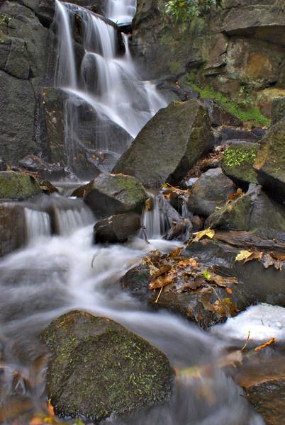 Autumn Stream by crazyshutter
