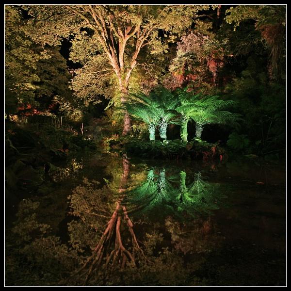 Abbotsbury gardens by pennyspike