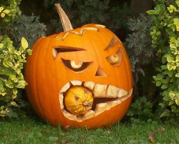 pumpkin pumkin by jessie272