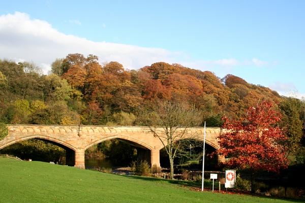 Autumn Colours by GordonLack