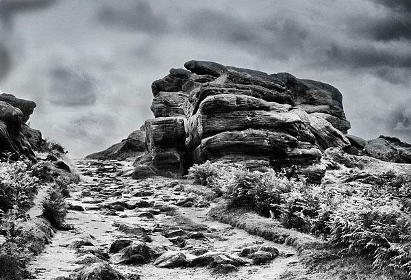 rocky by wohlenberg