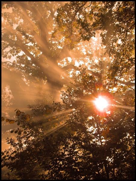 Bonfire smoke part 2 by jamestheboy