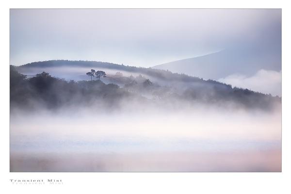 Transient Mist... by chris-p