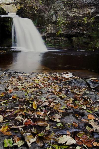 West Burton Falls. by steve_r