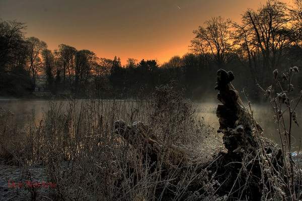 frosty morning by ian9106